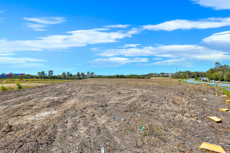 Vivid Productions Commercial Photography and Videography Vacant Land - Close-up View of Clearing